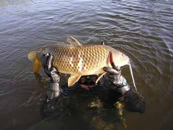 Поради пыдводним рибалкам