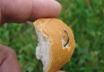 Как ловить карпа на хлеб